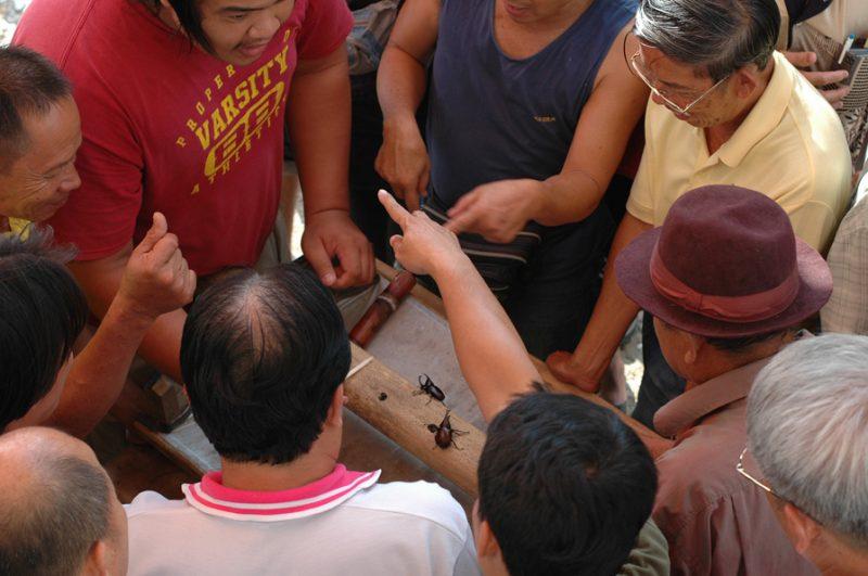 KWANG 2007 (156)